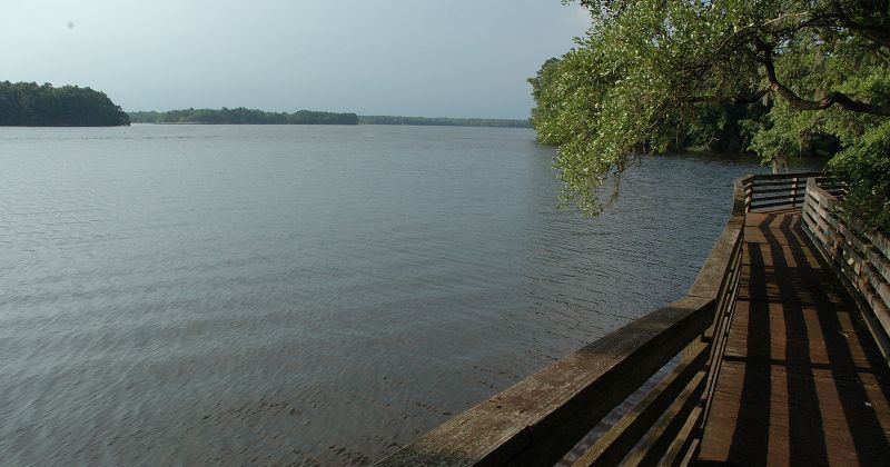 Luther Hall Landing - boardwalk with scenic view of Lake Talquin