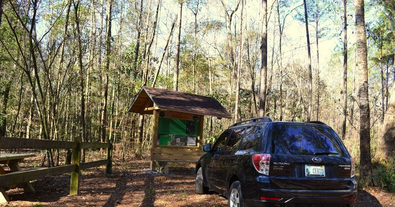 Wakulla State Forest accessible nature drive to spring with interpretive kiosk