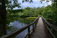 Myron b. Hodge City Park - boardwalk on the scenic Sopchoppy River