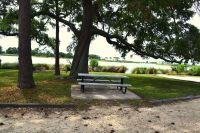St. Marks National Wildlife Refuge - picnic area