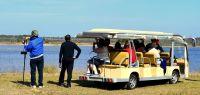 Tram transports group of wildlife observers at St. Marks National Wildlife Refuge