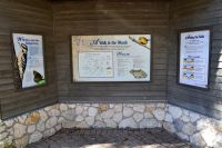 interpretive kiosk at Leon Sinks Geological area