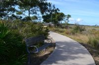 Marsh Boardwalk and Bench at Bald Point State Park