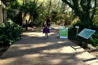 Walking surface near entrance of Tallahassee Museum